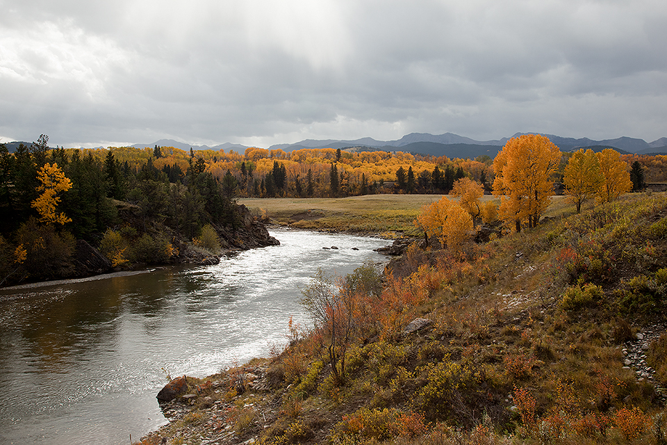 Autumn On The Oldman River