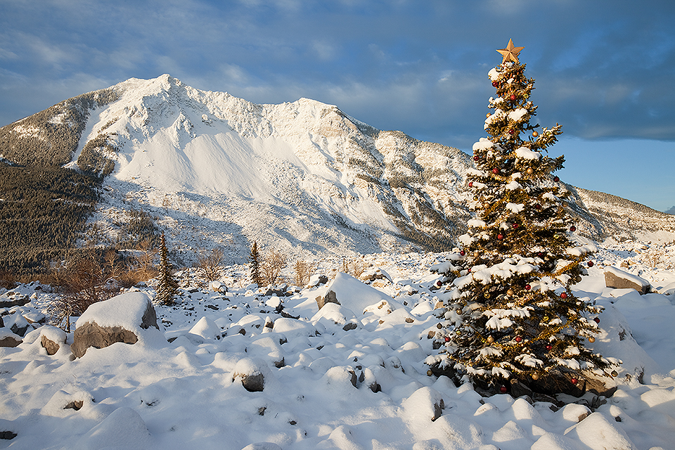 Christmas In Frank Slide