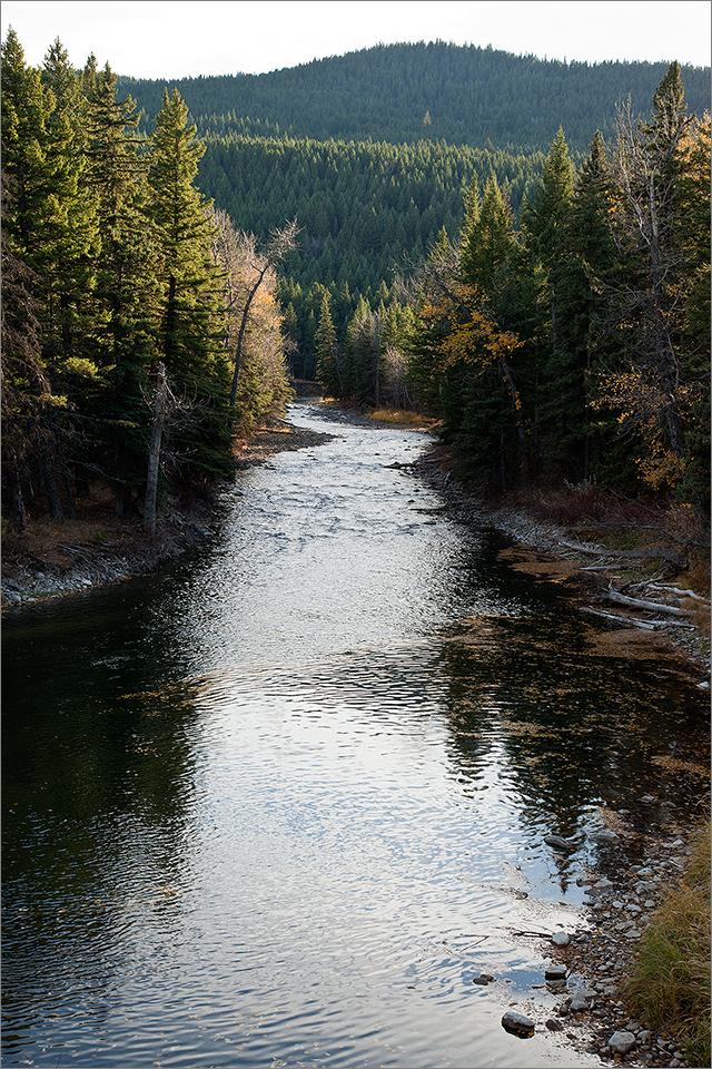Crowsnest River #3