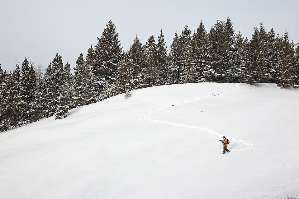 Snowshoeing #1