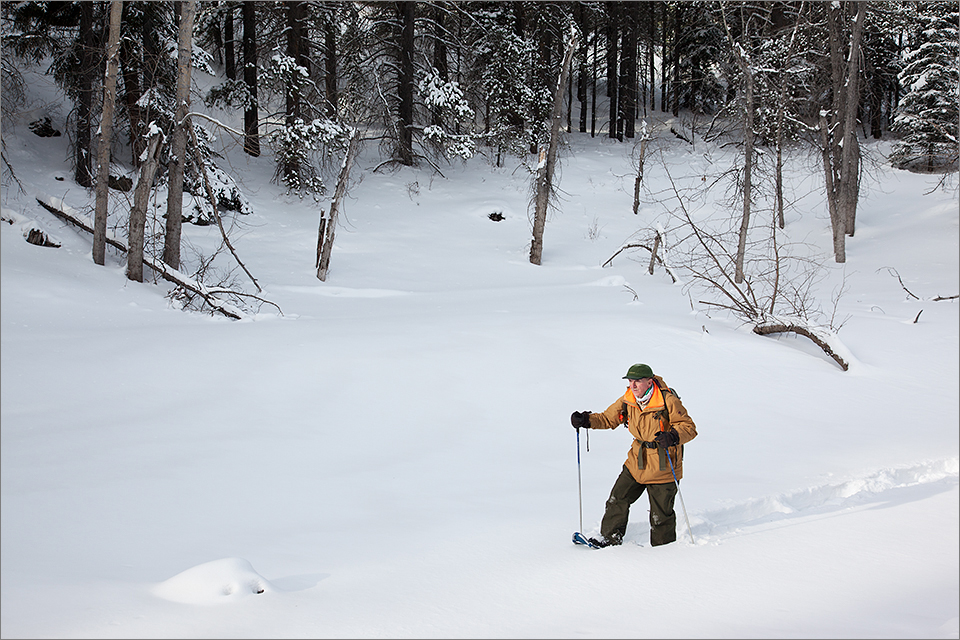Snowshoeing #2