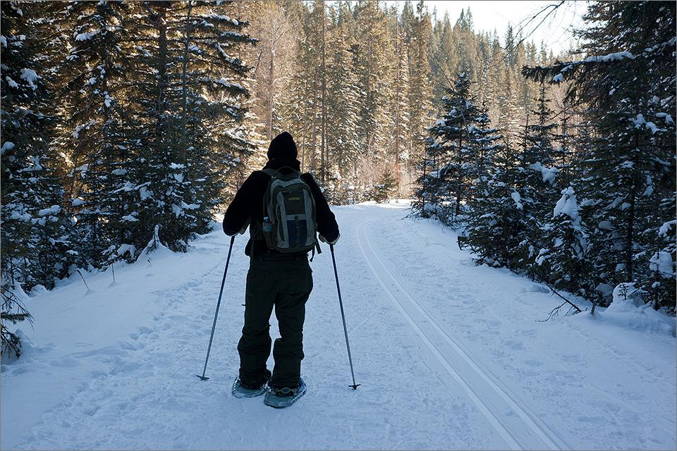Snowshoeing #3