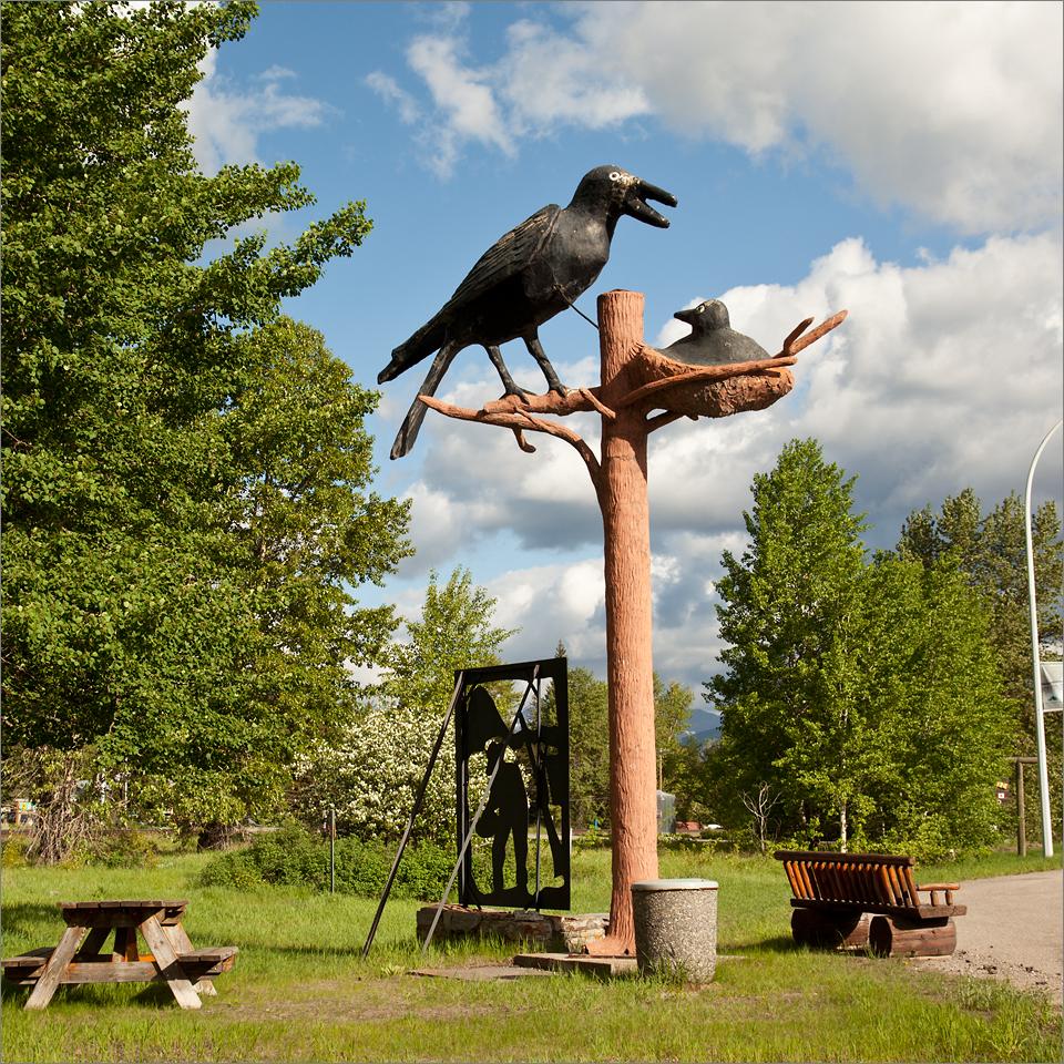 Blairmore Crow