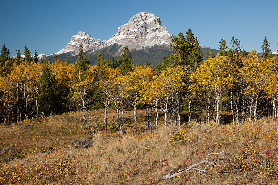 Crowsnest Mountain-Seven Sisters