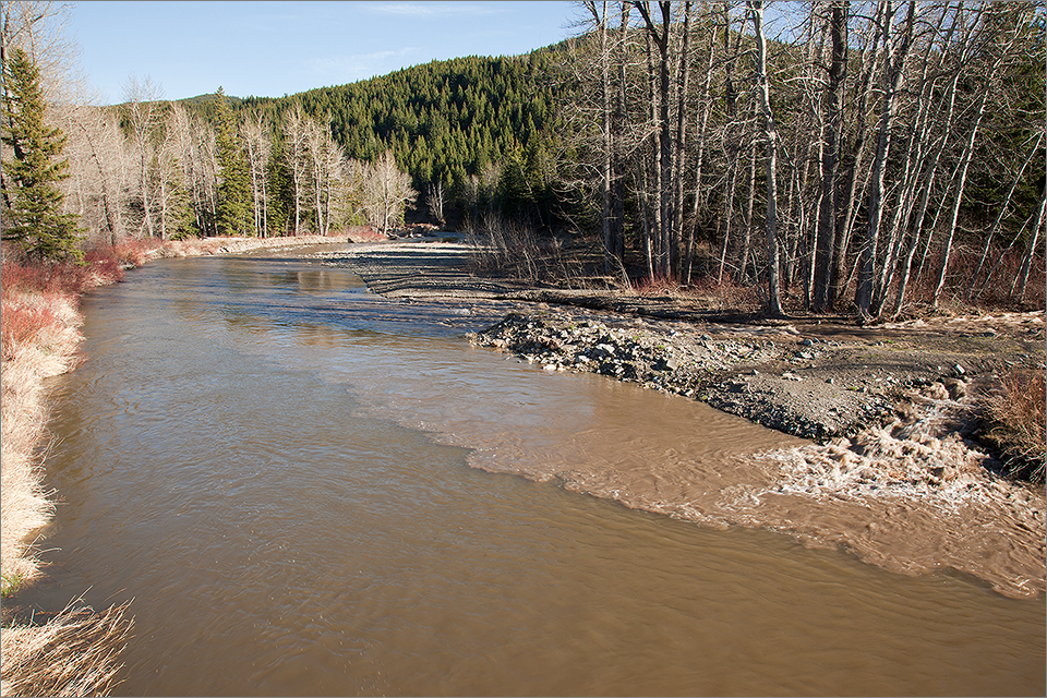 Spring runoff on the Crowsnest River