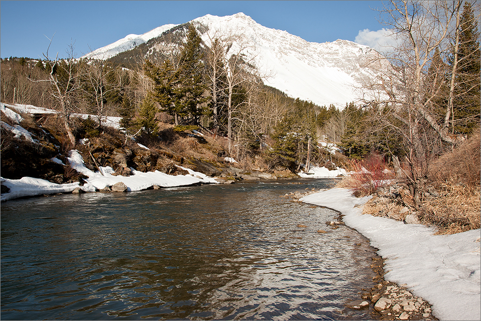 Crowsnest River open to fishing year-round