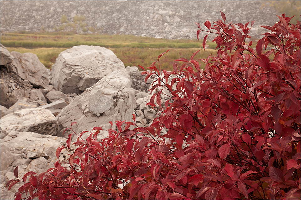 Boulders, rocks, & red leaves