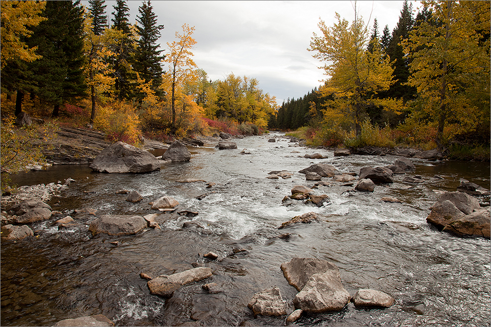 Crowsnest River near Turtle Mountain II