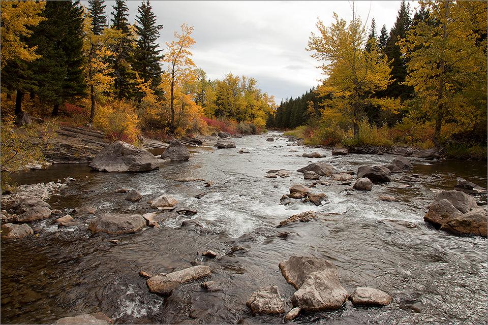 Crowsnest River near Turtle Mountain II